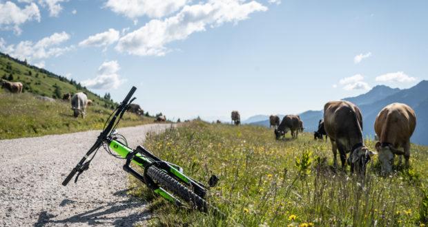 Bike Days di Pontedilegno-Tonale