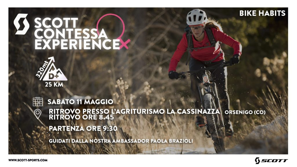 Scott Contessa Experience